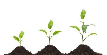 success-factors-startup